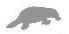 platypus gray