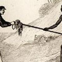 Ce qu'il advint du sauvage blanc de François Garde