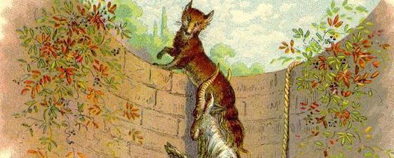 le renard et le bouc