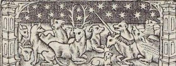 licorne-cerf